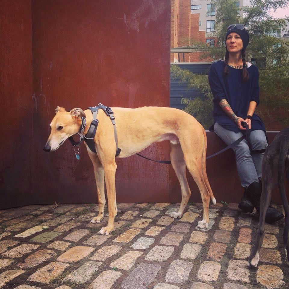 rach_dogs_old port.jpg